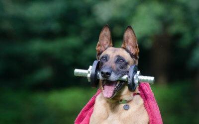 Unusual Benefits of Exercise