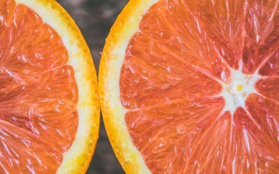 Foods That are Good for Your Immune System